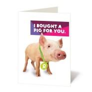 Pig Oxfam